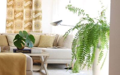 Tendencias otoño para tu hogar