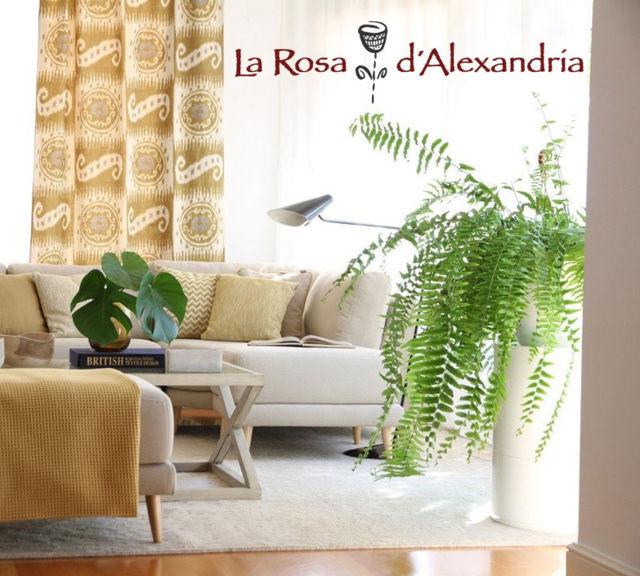 Salón decorado con tendencias de otoño colores cálidos en sofá y cortinas